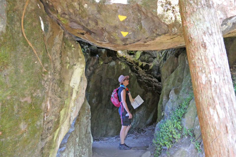 Twin Coast Cycle Trail Wairere Boulders image 1 credit bennettandslater.co.nz